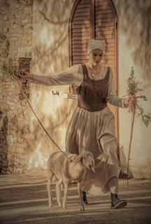 Foto 26 - Serena Nofrini